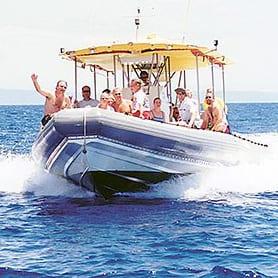 Maui Adventure Cruises – Lanai Dolphin Snorkel