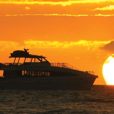 Pacific Whale Foundation – Sunset Dinner Cruise