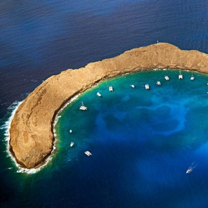 Pacific Whale Foundation Molokini