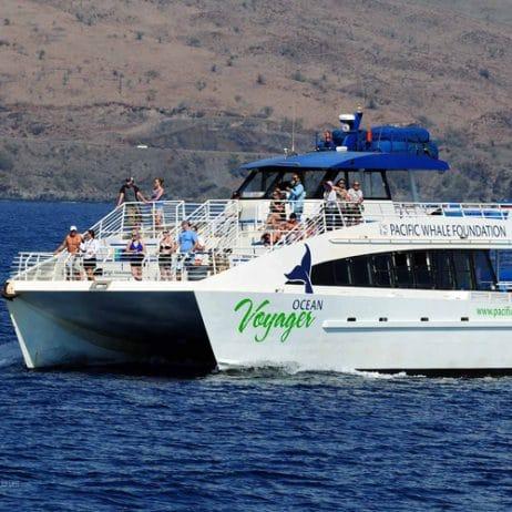 PWF Snorkeling tours 98