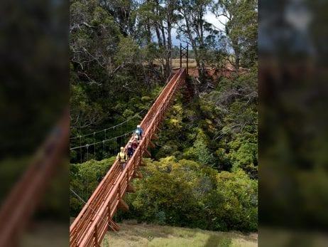 Piiholo zipline adventures in Maui 2806