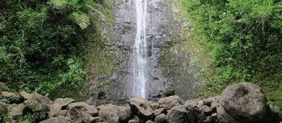 Road to Hana Maui - 2773