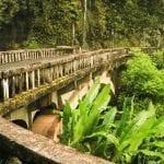 Bridge along Road to Hana - 2772
