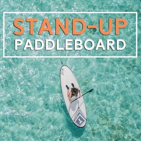 Stand Up Paddleboard Maui - 2425