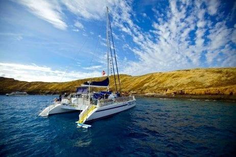 Trilogy Maui snorkel 452