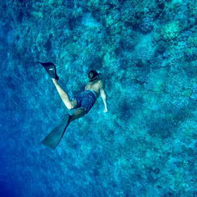 Molokini Calypso Snorkeling 33