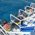Calypso maui snorkel tour 40