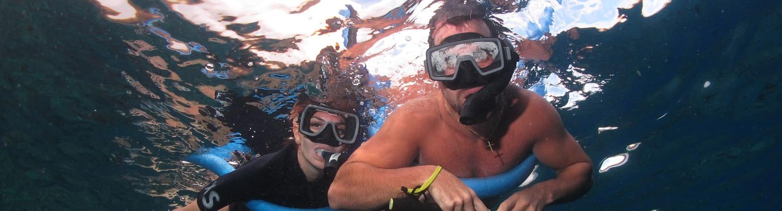 Snorkeling in Maui - 2622