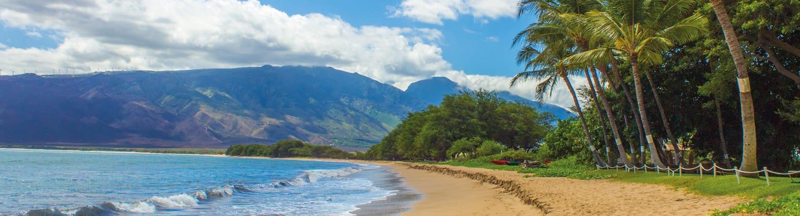 Beach view - 2478