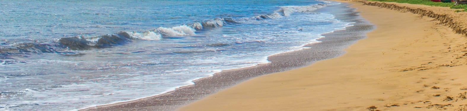 Lanai Beach - 2554