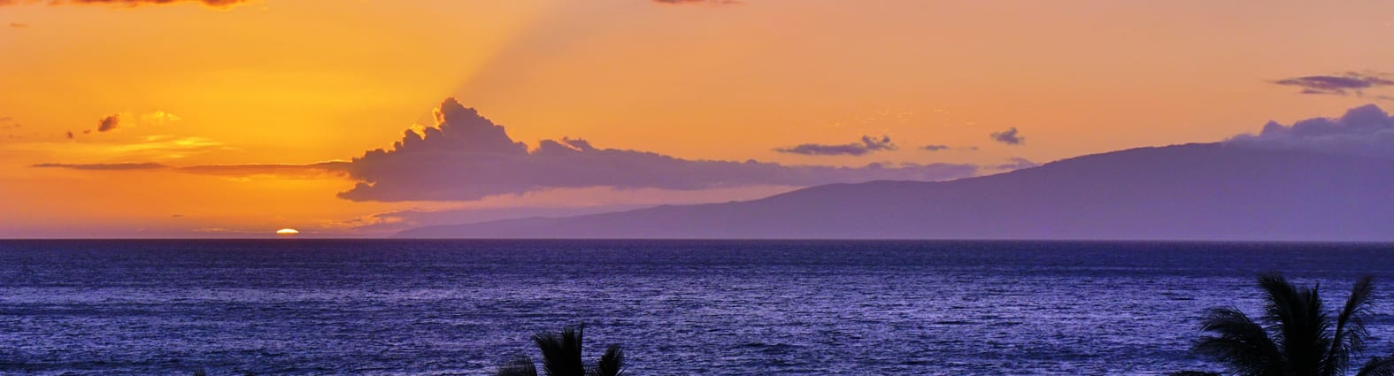 Sunset Tours in Maui - 2577