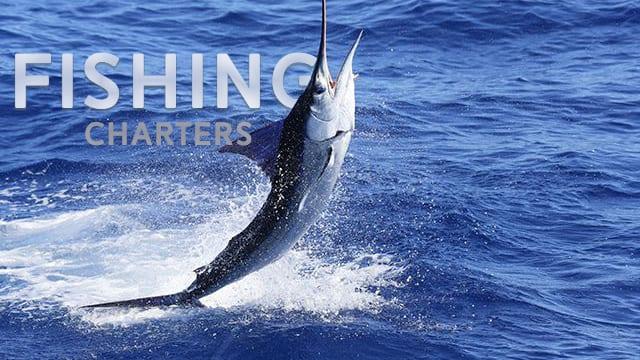 Maui Fishing Charters Get A Deal On Maui Fishing Maui