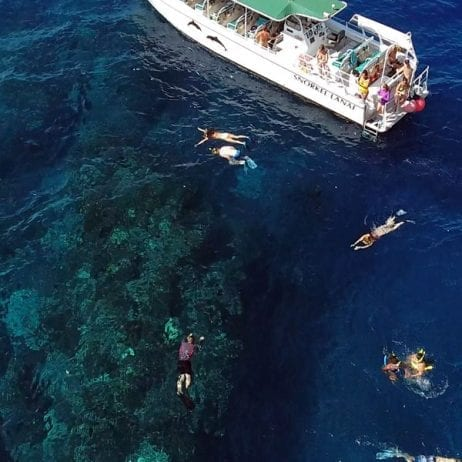 Kaanapali-Ocean-Adventures - Private-Charters (Snorkeling drone shot)