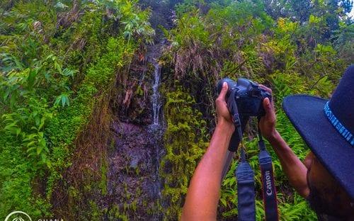 5e3d65f6ea Aloha Hawaii Tours - Save on Road to Hana Tours - Maui Tickets for Less
