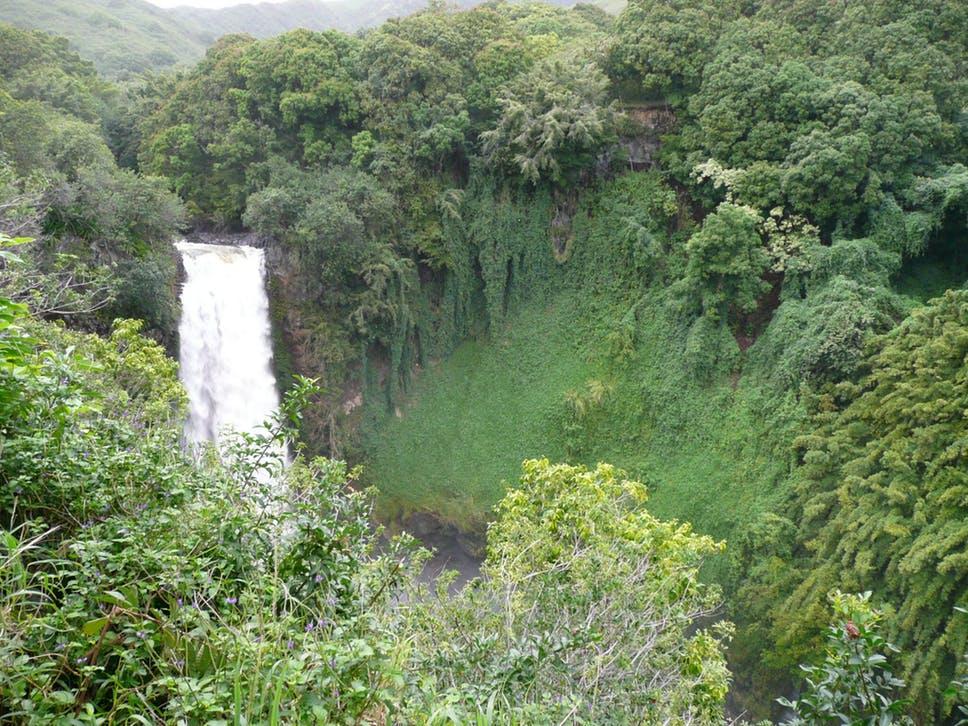 Hike Maui Title Photo