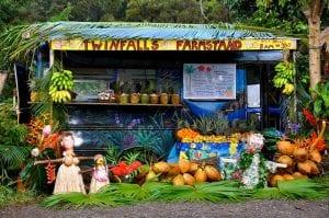 Twin Falls Farm Stand